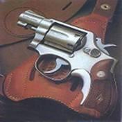 转轮手枪模拟器